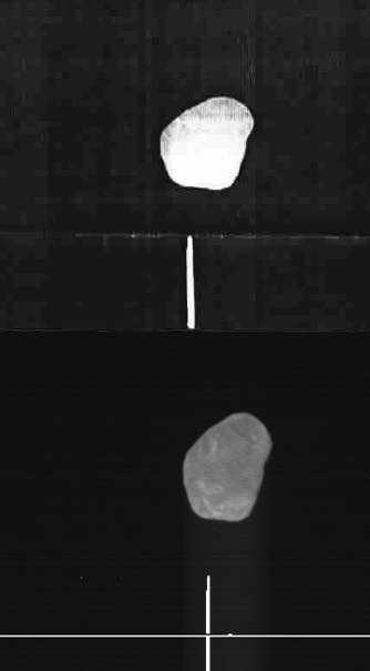 Sonde-Phobos